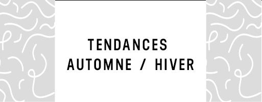 TendanceAutomneHive_20181116-161709_1